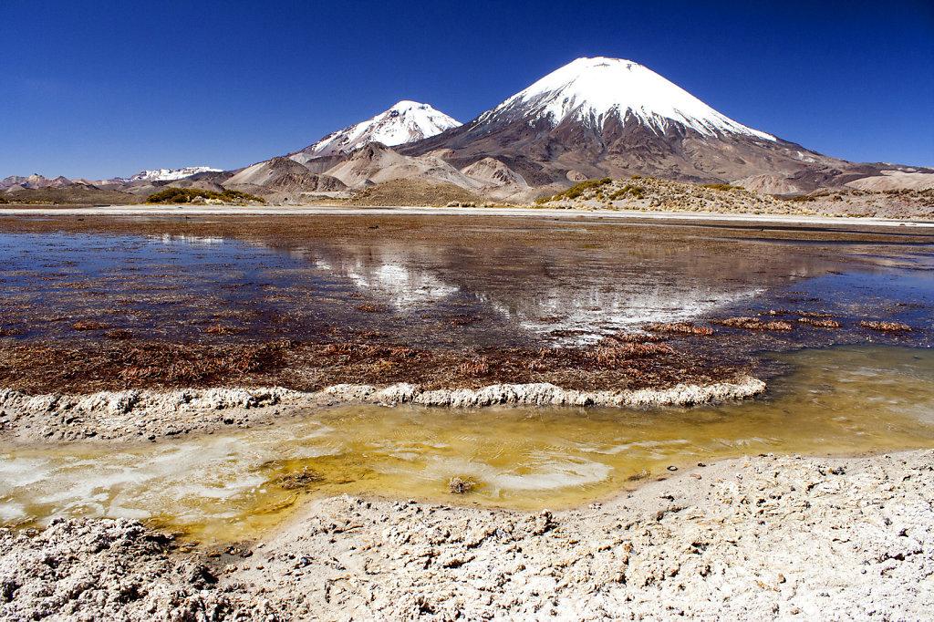 Chili Noord